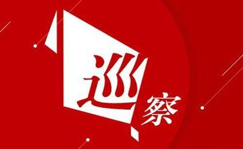 枣庄市山亭区委巡察组反馈八届区委第六轮巡察情况