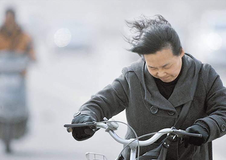 海丽气象吧丨淄博发布大风蓝色预警 今夜将有7级南大风