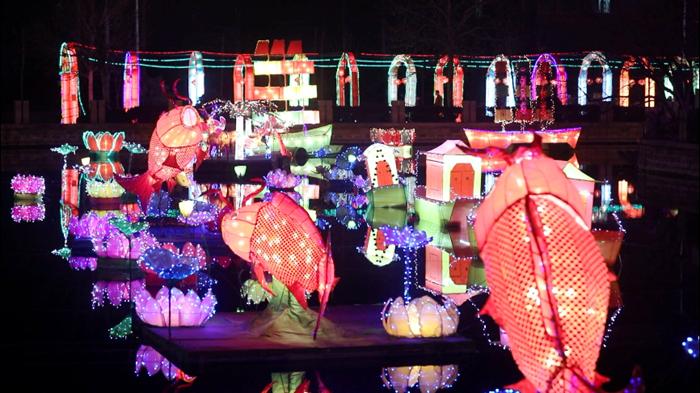 43秒|临清宛园灯会年味儿浓 万盏花灯吸引市民驻足
