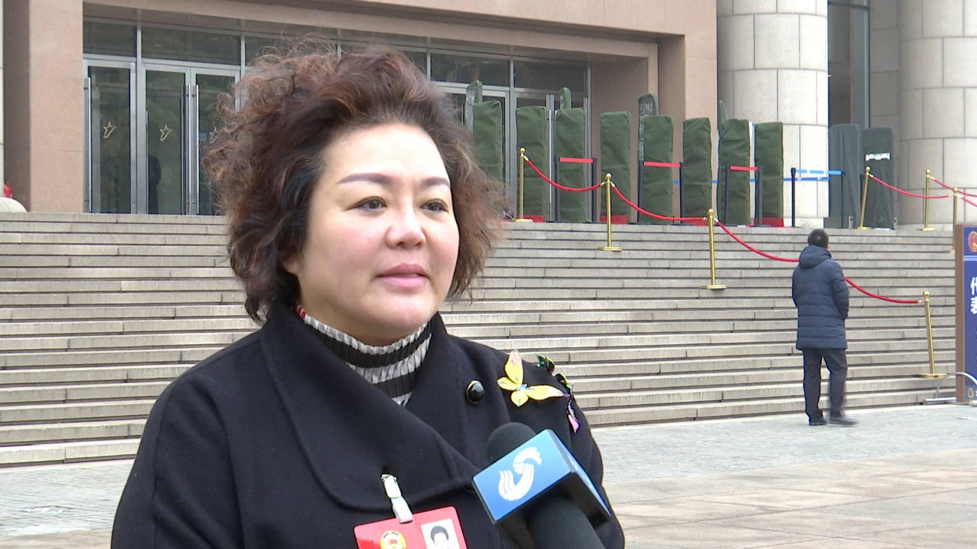省政协委员刘央:这届政府执行落实力度十分到位