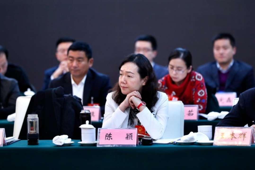 省人大代表陈颖:对民营企业不仅要锦上添花,更要雪中送炭