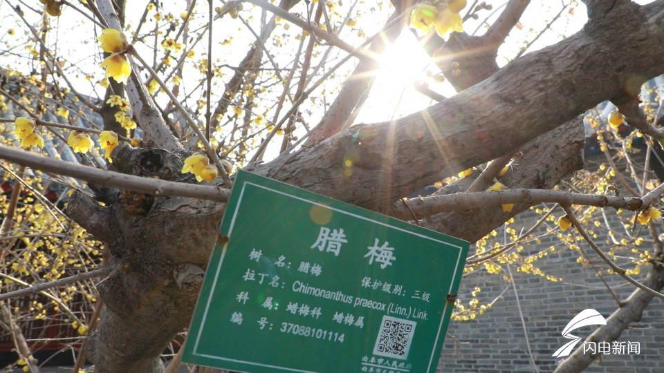 bangjia1.jpg