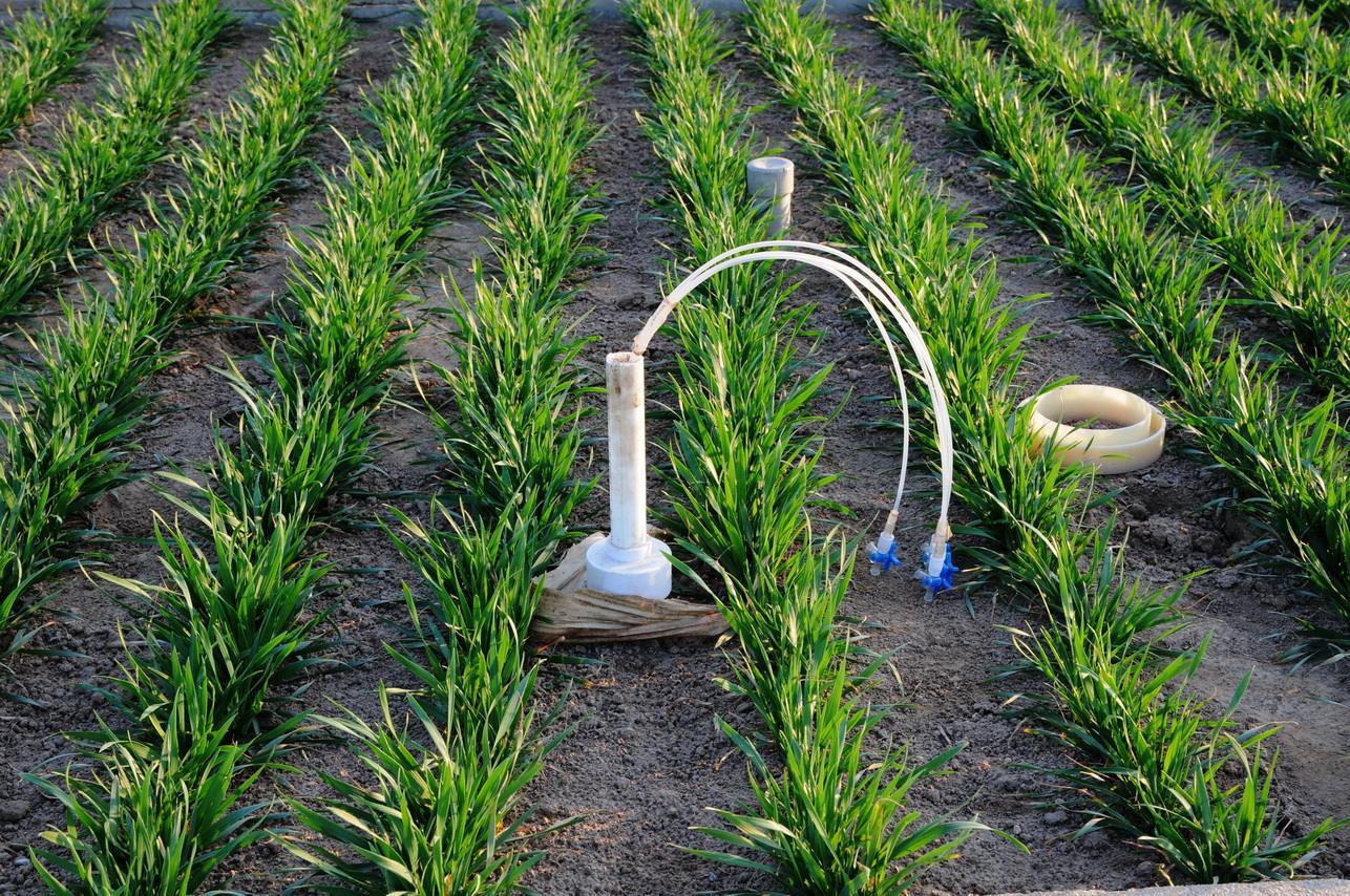 山东督促开展高标准农田建设自评工作