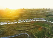 一年来,泰安市泰山区域山水林田湖草生态保护修复工程进展如何?