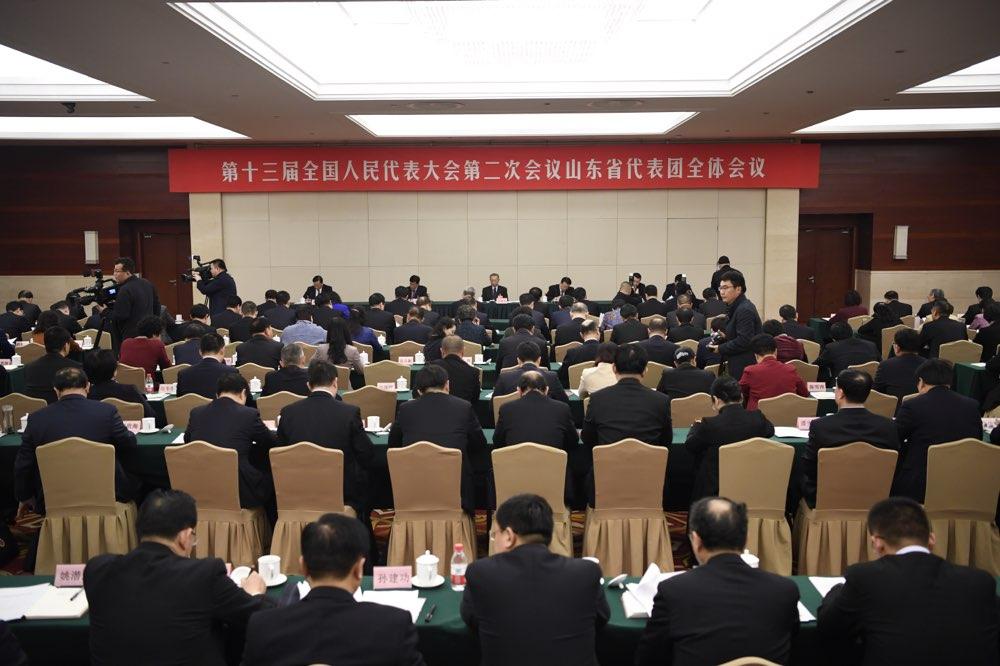 十三届全国人大二次会议山东代表团成立