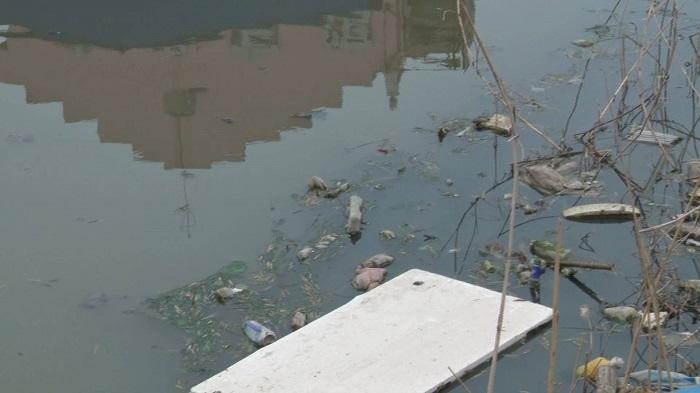 30秒丨绿水青山不能少!成武县整治黑臭河 引来碧水流