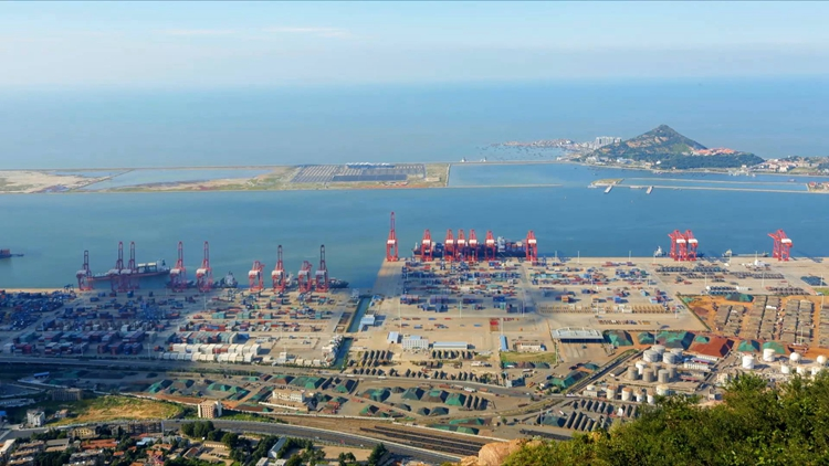 """牢记嘱托 担当作为抓落实丨山东在沿海全面推行""""湾长制"""" 水质优良率稳定在85%"""