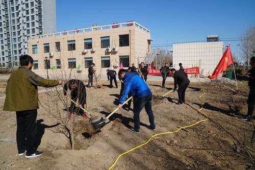 滨州无棣县水文局用实际行动多植树造林 打造绿水青山