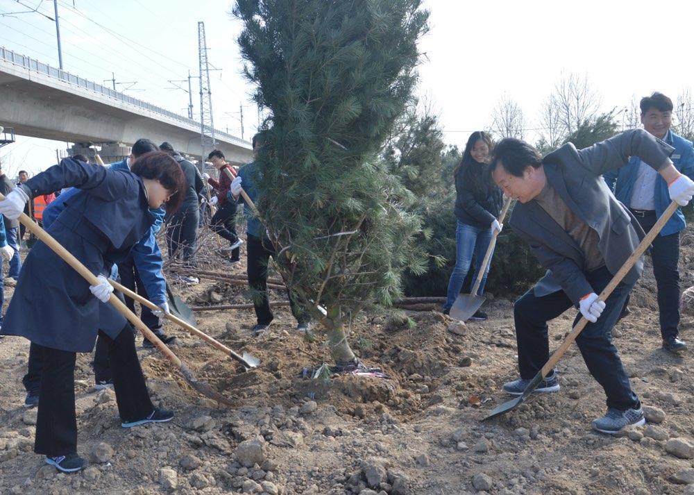 淄博高新区开展义务植树活动 共建碧水蓝天宜居城市