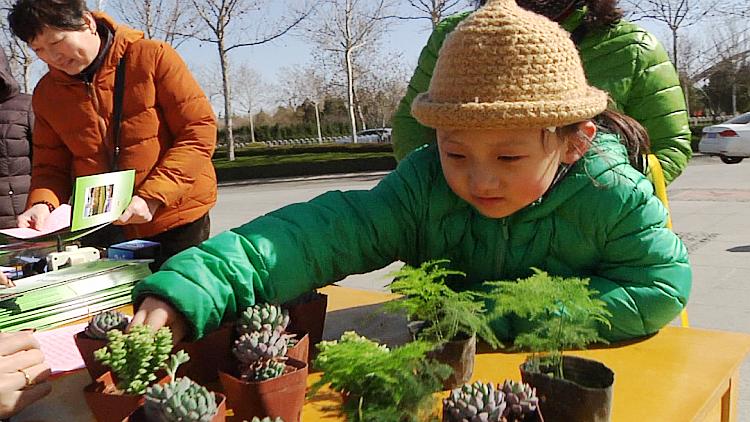 """潍坊""""植树节""""乐趣多 千余位市民免费领到""""绿色大礼包"""""""