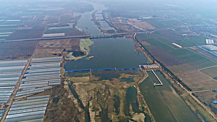 牢记嘱托 继承作为抓落实丨污染水质 修养水源 泰安沿河村民们种地有了保证