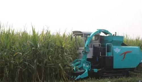 """山东公布农业机器跨区作业告示 对""""车匪路霸""""绝不迁就"""
