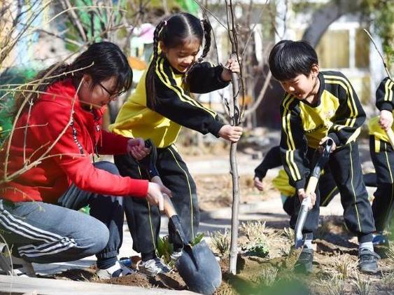 """拥抱""""绿水青山"""" 潍坊今年植树节期间共栽下11.3万棵新苗"""