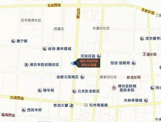 潍坊市民明天可到这里免费领树苗!每人两株