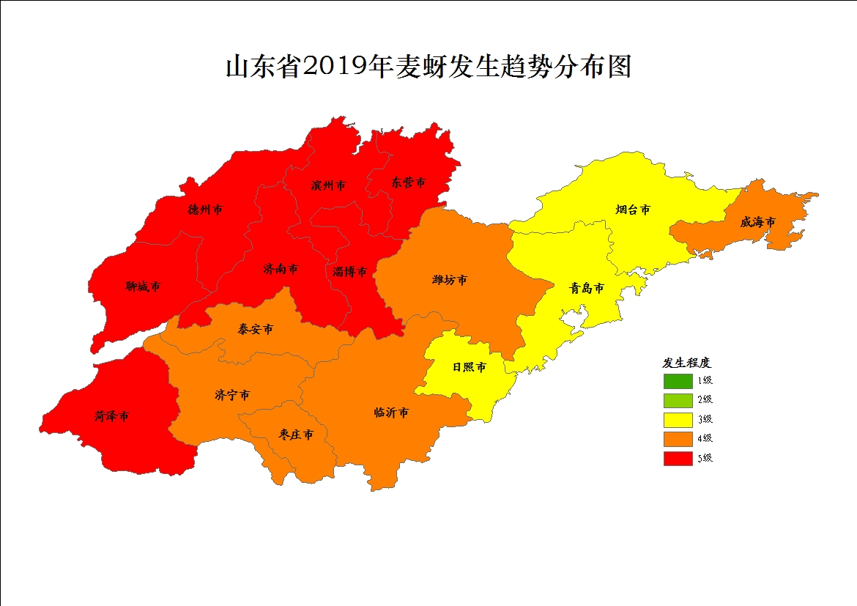 山东公布2019年上半年重要农作物病虫产生趋向 小麦病虫中等产生