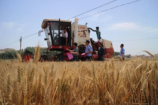 山东:农作物耕作收综合机器化率到达86.5%