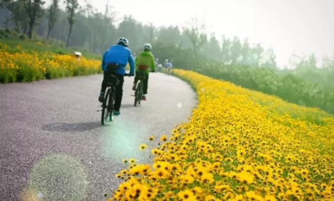 潍坊北辰绿洲湿地公园即日起至5月31日临时性闭园