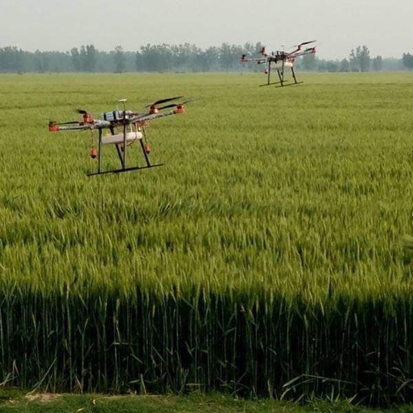 去年山东开展农作物有害生物防控6.08亿亩次 挽回产量损失2100多万吨