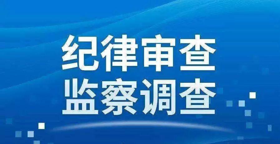 莒南县洙边镇一村党支部书记接受纪律审查和监察调查
