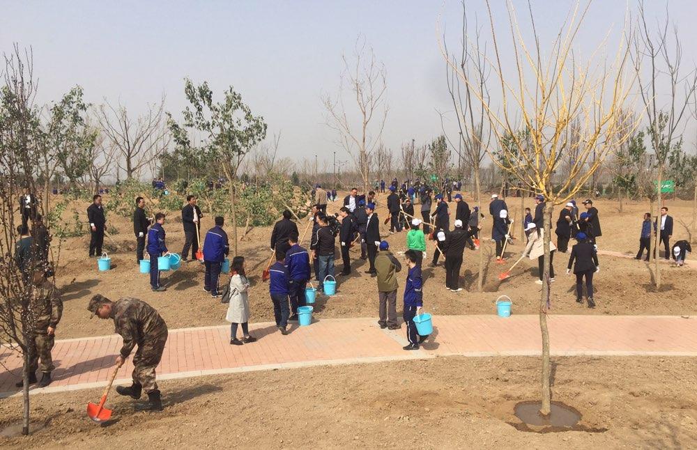 军地领导在济南参加义务植树活动