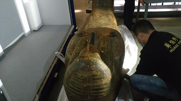 木乃伊来了! 古埃及人的生命观特展即将亮相山东博物馆