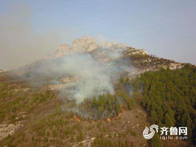 注意!山东近期火灾多发 如遇森林火灾专家教你这样自救