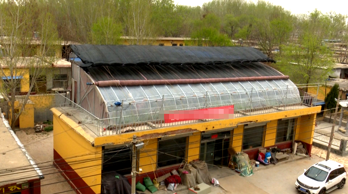 69秒|大开眼界!莘县这位村民在自家房顶建了座蔬菜大棚