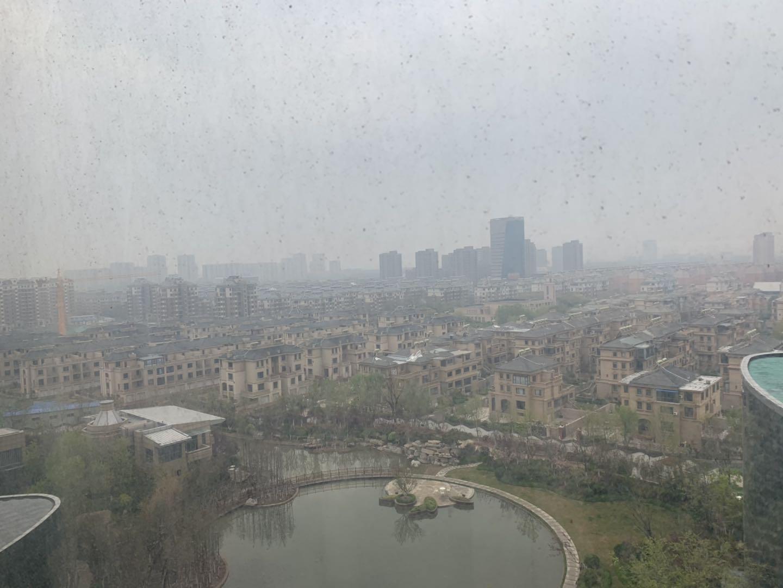 海丽气象吧|山东本周气温前高后低 今明部分地区有雨