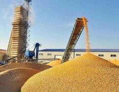 山东省级财政累计安排4.35亿元支持粮食产后服务体系建设
