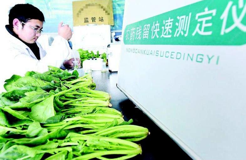 寿光公开招聘56名蔬菜质量安全网格监管员 要求持有驾驶证