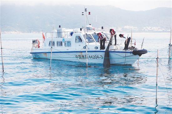 """""""亮剑2019""""潍坊7大专项执法行动亮剑海洋渔业发展"""