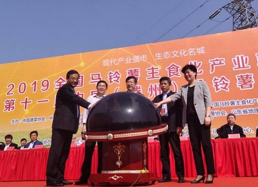 2019第十一届中国(滕州)马铃薯科技文化节开幕