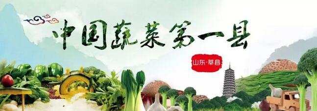 第二届山东聊城(莘县)瓜菜菌博览会新闻发布会举行