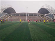 21日起 潍坊市体育中心奥体中心球场对外开放了!