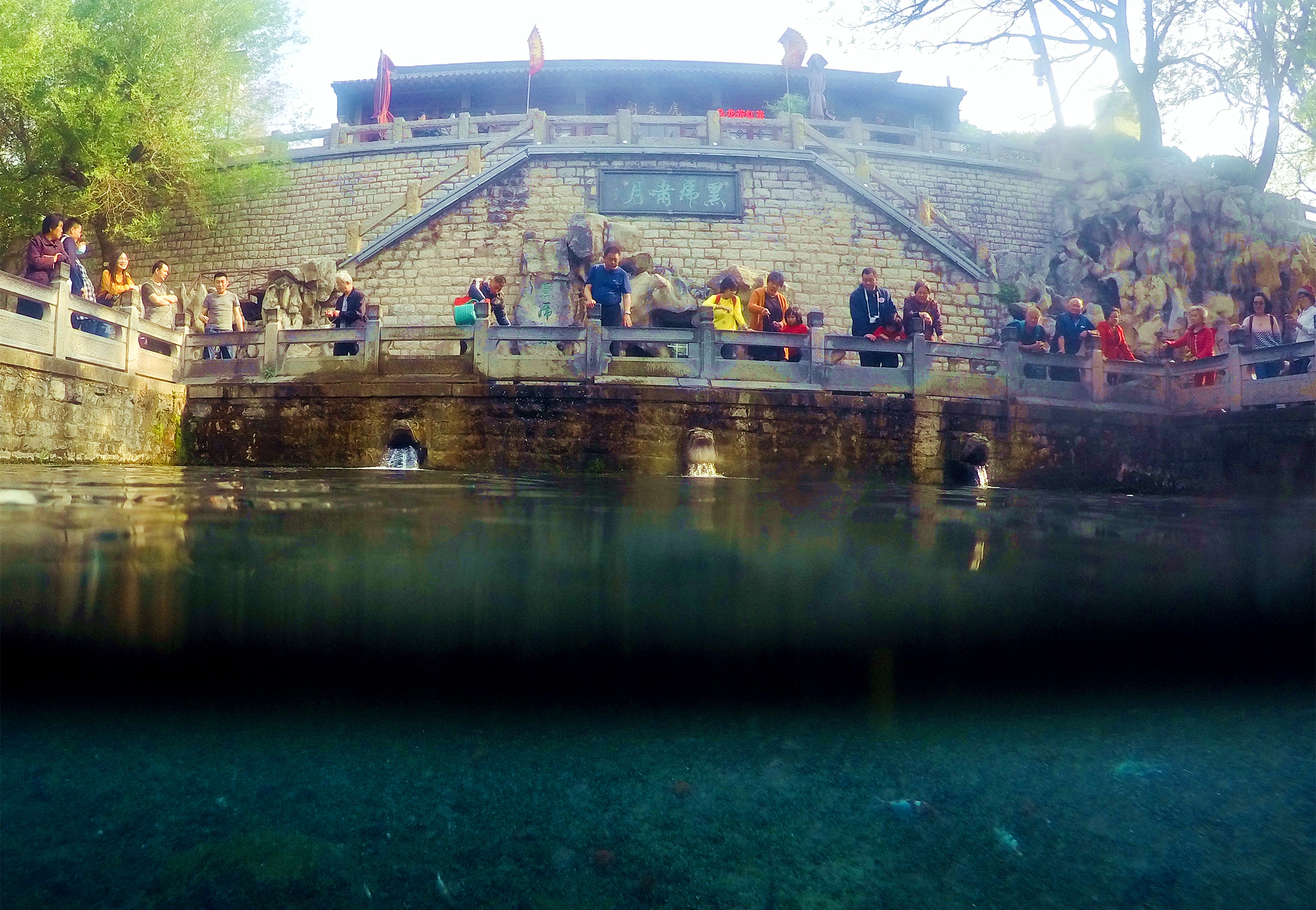 59秒|水下拍摄济南黑虎泉:不光岸上风景怡人 水下更是春意盎然