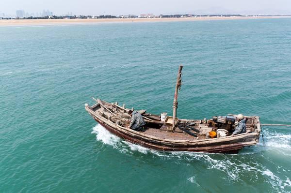 到2020年底,山东海洋禁用渔具基本杜绝