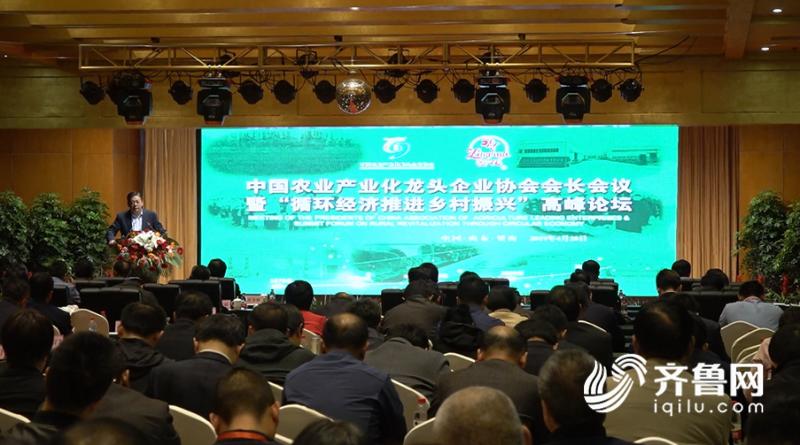 2019循环经济_2019-2023年景县循环经济发展战略研究报告-区域经济规划报告 研究...