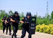 寒亭公安分局统一招聘公安警务辅助人员36名