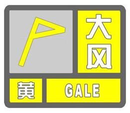 海丽气象吧丨9级阵风已着陆 潍坊寒亭发布大风黄色预警