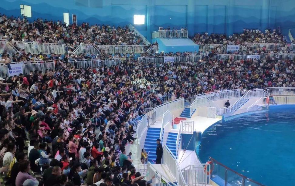 """游客数量突破88万人次 寿光发布""""五一""""假期""""旅游成绩单"""""""