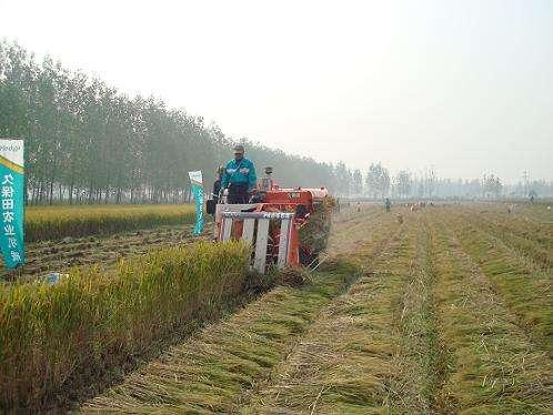 """山东将做好""""三夏""""农机质量投诉工作 及时受理有效处理"""