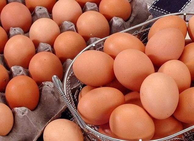 山东:对开具合格证的鲜鸡蛋生产企业实施目录制管理