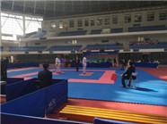 潍坊队首次出征山东省空手道锦标赛 勇夺7金4银7铜