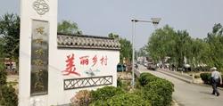 """盘活土地资源!阳谷32个村庄实行宅基地""""三权分置"""""""
