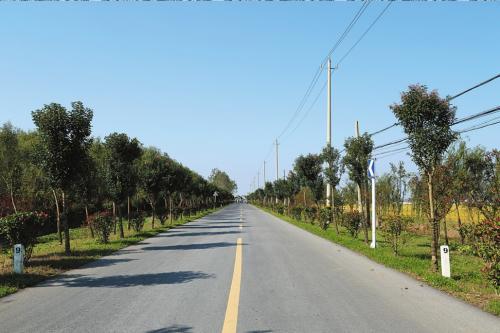 问政山东·追踪|省交通运输厅通报整改情况,这三地农村路时间表出炉