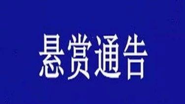 未履行金额高达20万元 寿光两男子被法院悬赏征集线索