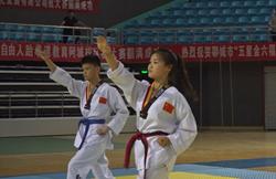 2019年聊城市第二届大众跆拳道邀请赛开赛 500余选手竞技