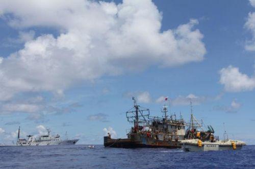 2018年山东投入专业远洋渔船484艘 产值57.82亿元