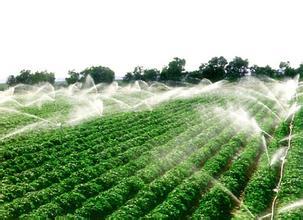 山东省高标准农田建设评价激励实施办法开始试行