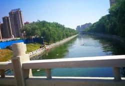 51秒|女孩不慎坠5米深运河!临清两工人跳河救人,幸无大碍